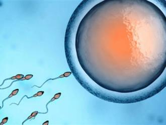 Có kinh nguyệt mà quan hệ tình dục liệu có thai không?