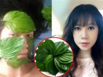Học vợ Lý Hải lấy lá trầu không đắp lên mặt để làn da trắng đẹp trẻ mãi, xóa mọi vết tàn nhang