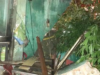 Mưa lớn khiến cây xanh ở Sài Gòn bật gốc đè trúng 4 căn nhà, hai mẹ con mắc kẹt hoảng loạn kêu cứu