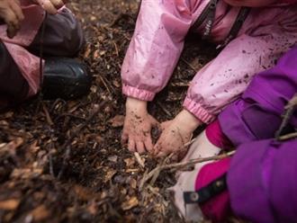 Chơi đùa và leo trèo trong rừng - Đây là cách trẻ em Đức đi học mẫu giáo