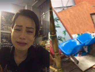 Vợ Xuân Bắc tiếp tục livestream chứng minh lớp chị dạy bị xếp phòng tệ nhất, cơ sở vật chất tồi tàn, bàn ghế toàn đi lượm ở bãi phế thải