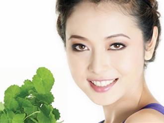 Trị sẹo lồi bằng rau má thúc đẩy tái tạo làn da mới trở nên láng mịn đẹp hoàn hảo