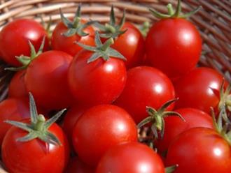 Mặt nạ trắng da từ cà chua cho bạn làn da đẹp như dưỡng trắng ở spa