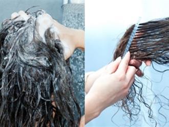 Thói quen ít ai ngờ khiến tóc rụng cả nắm mỗi khi chải đầu
