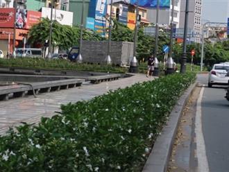 """Bị đâm chết khi xin """"đểu"""" ở công viên Hoàng Văn Thụ"""