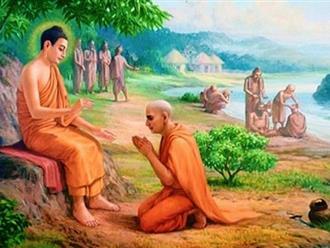 'Làm thế nào để sống thanh thản, vứt bỏ mọi buồn lo?' - Câu trả lời của Đức Phật khiến nhiều người giật mình tỉnh ngộ