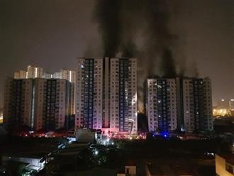 13 người chết trong đám cháy chung cư Carina đều do ngạt khói