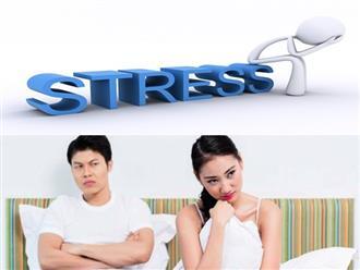 Không chỉ ảnh hưởng sức khỏe, stress còn gây ra hàng loạt tác hại đối với 'chuyện ấy'