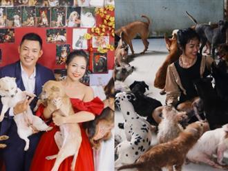 Cặp vợ chồng chấp nhận không sinh con để lo chu toàn cho đàn chó, mèo 100 con bị chủ F0 bỏ rơi mùa dịch