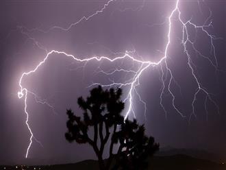 Kinh hoàng: 12 người bị sét đánh khi đang trú mưa giữa đồng