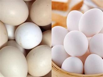 Nhìn 3 giây biết ngay đâu là trứng gà ta, đâu là trứng gà công nghiệp tẩy trắng, cực chuẩn