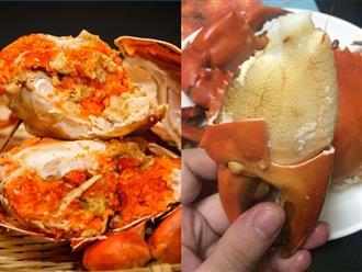 Khi hấp cua, đặt cua ngửa hay úp bụng, nhiều người làm sai khiến món ăn vừa tanh lại nhạt nhẽo