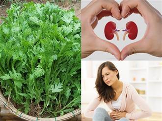 Loại rau rẻ tiền trồng đầy sau vườn của nhiều gia đình nhưng có công dụng tuyệt vời đến mức khó tin