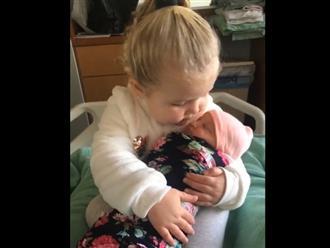 Bé gái 3 tuổi nựng em mới sinh quá đáng yêu khiến người xem 'tan chảy'