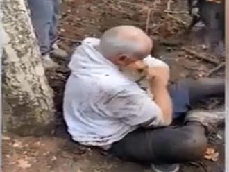 Cảm động khoảnh khắc chủ nhân òa khóc khi đoàn tụ với chú chó mất tích