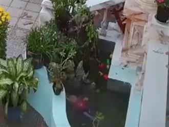 Clip bé trai rơi xuống bể cá, chới với cầu cứu ngày đầu năm khiến phụ huynh hoang mang