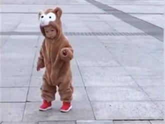 Clip em bé 'hóa gấu' đáng yêu chập chững tập đi khiến dân mạng 'phát cuồng'