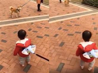 Cười té ghế cảnh em bé và chú cún 'nhìn nhau đắm đuối' giữa đường vì không nỡ chia xa
