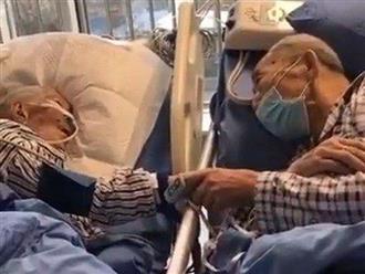Đôi vợ chồng già siết chặt tay nhau không rời khi biết mình bị nhiễm dịch Covid-19