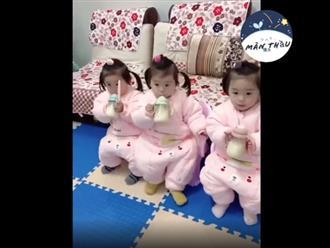 Nhà có 3 công chúa sinh ba sẽ hạnh phúc thế này đây