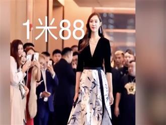 Chị đại cao 1m88, chân dài miên man khiến ai cũng ngoái nhìn, chiều cao của bố mẹ còn gây ngỡ ngàng hơn