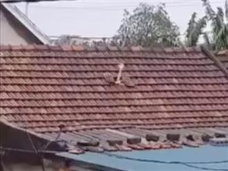 Đau lòng cảnh bàn tay nhỏ xíu thò qua mái ngói để cầu cứu vì nước lũ dâng cao