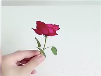 Lật tẩy màn ảo thuật biến tiền thành hoa hồng, hóa ra chỉ đơn giản thế này