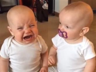 Cười nghiêng ngả với màn giành núm vú giả siêu đáng yêu của hai bé gái sinh đôi