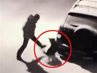 'Ngứa chân' đá chú chó trên đường, người đàn ông bị 'nghiệp quật' tức thì