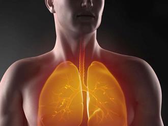 Bỏ túi ngay bài thuốc làm sạch phổi bảo vệ sức khỏe cực hiệu quả