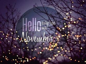 Gợi ý những lời chúc đầu tháng 11 hay nhất