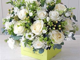 Hướng dẫn cách cắm hoa ngày 20/11 đẹp và ý nghĩa tặng thầy cô giáo