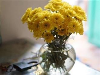 Hướng dẫn cắm hoa cúc để bàn thờ đẹp cho ngày lễ Tết