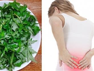 Tổng hợp bài thuốc chữa đau lưng, nhức mỏi hiệu quả trong dân gian