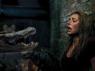 Top 10 phim cá sấu hay nhất, hồi hộp, gay cấn tới từng giây