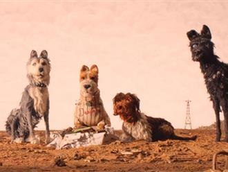 Top 15+ phim về chó hay và đáng yêu nhất mà bạn không nên bỏ lỡ