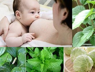 Mẹ cần biết: Khi cho con bú không nên ăn gì để tránh mất sữa, ít sữa