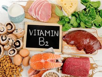 Vitamin B2 có trong thực phẩm nào và có những tác dụng gì?