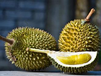 Thực hư việc bà bầu ăn sầu riêng gây khó sinh?