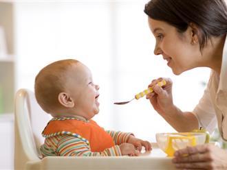 Khi nào cho trẻ ăn dặm: Những thời điểm vàng các mẹ cần biết