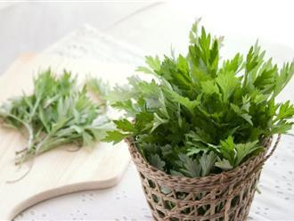 7 mẹo chữa rong kinh bằng ngải cứu và các thảo dược tự nhiên