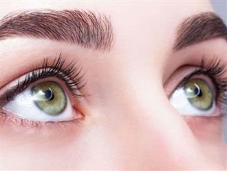 Ăn gì để bổ mắt, tìm hiểu các món ăn giúp cho mắt sáng, khỏe mạnh