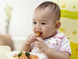 Bé 8 tháng ăn được gì? Thực đơn ăn dặm cho bé 8 tháng