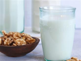 Cách làm sữa hạt óc chó bồi bổ dinh dưỡng