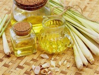 Hướng dẫn cách nấu tinh dầu sả đơn giản tại nhà