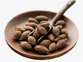 Tác dụng của hạt đười ươi và những cách dùng hiệu quả nhất