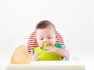 Thực đơn ăn dặm cho bé 11 tháng để trẻ thông minh mau lớn