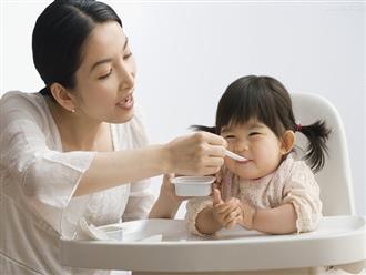 Thực đơn cho bé 2 tuổi biếng ăn để cùng con phát triển mỗi ngày