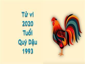 Xem tuổi 1993 – Tử vi tuổi Quý Dậu 2020