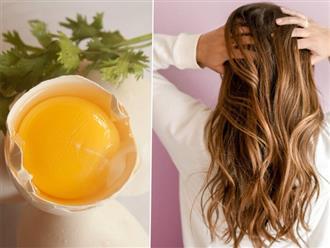 Bí quyết dưỡng tóc bằng trứng gà cho hiệu quả bất ngờ